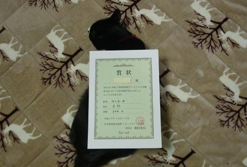 Asahi_4.jpg